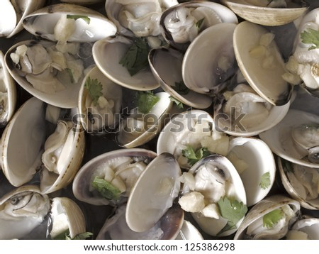 close up of white clams in white wine sauce food background