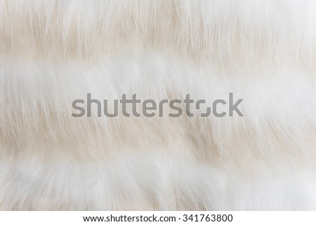 close up of white fur as background image - stock photo