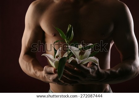 close-up of white lily in the hands against the background of a naked torso on dark background studio - stock photo
