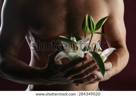 close-up of white lily in the hands against the background of a naked torso on dark background studio