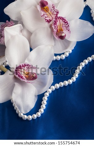Close-up of white orchids flowers on blue background