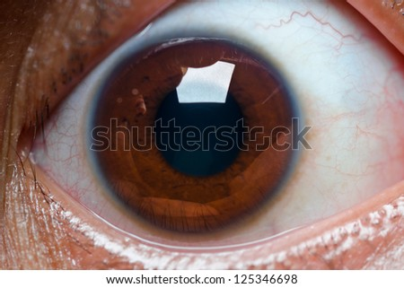 close up of wide open brown eye - stock photo