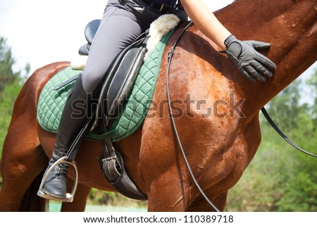 Close-up of woman rider and horse - stock photo