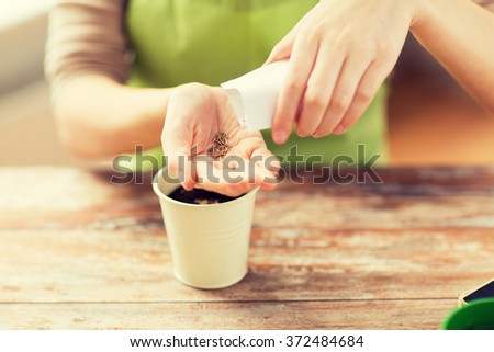 close up of woman sowing seeds to soil in pot - stock photo