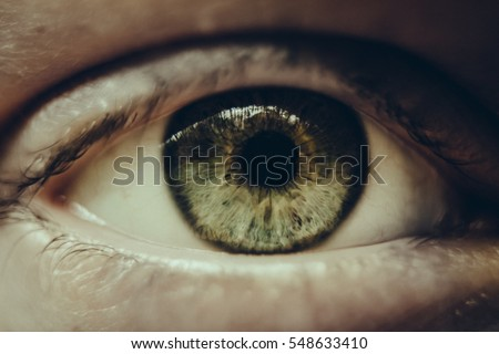close up of women green eye
