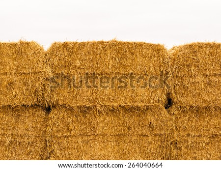Close-up of yellow stacked hay bales against gray overcast sky. - stock photo
