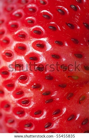 Close Up on a piece of Strawberry Skin.