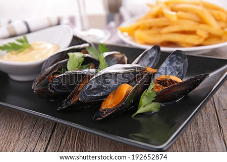 close up on mussel