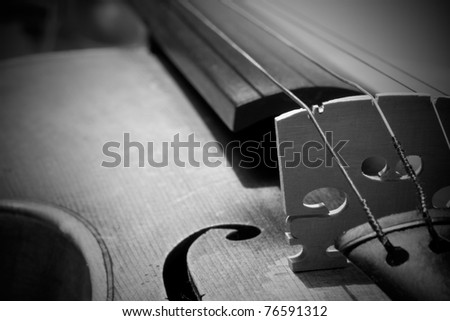 Close-up on Violin detail - stock photo