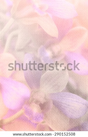 Close up orchid flower in soft color and blurred style on burlap textured background