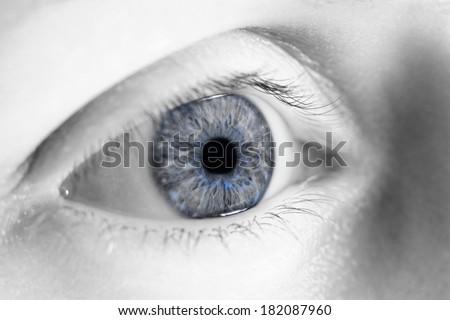 Close up photo of a female eye without make-up