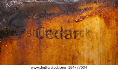 Close up photo of a used burned cedar plank  - stock photo