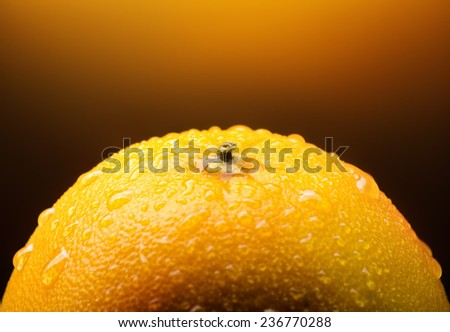 Close-up photo of juicy wet orange fruit - stock photo