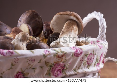 Close up photo of the edible fungus - Boletus edulis - known as penny bun placed in a white basket on a wooden background.