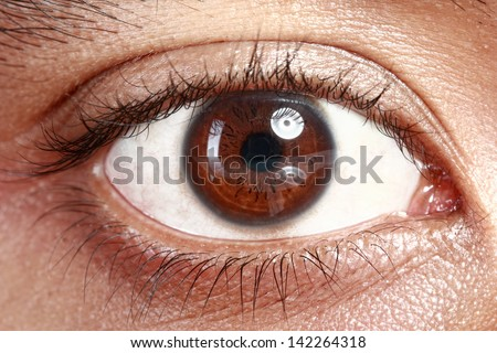 Close up picture of brown eyes from a young man - stock photo