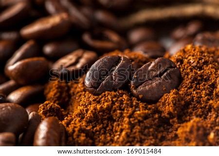 close up picture of coffee beans in studio - stock photo