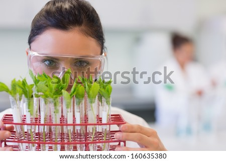 Close-up portrait of a female scientist with young plants at the laboratory - stock photo