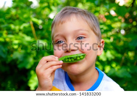 Close-up portrait of handsome little boy eating green Peas in garden - stock photo