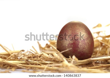 Close-up portrait of red and golden egg