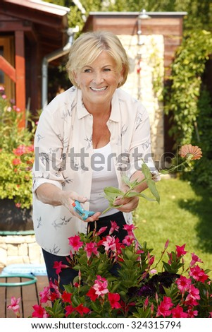 Close-up portrait of senior woman gardening at home. Smiling grandmother cares of plants while standing in her beautiful garden.