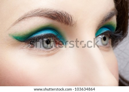 close-up portrait of young beautiful woman eye zone make up