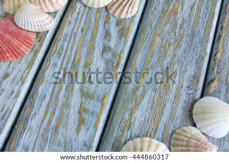 Close-up seashells on old wooden board