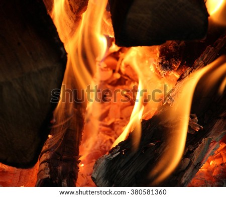 Close up shot of a fire and firewood burning in the fireplace.