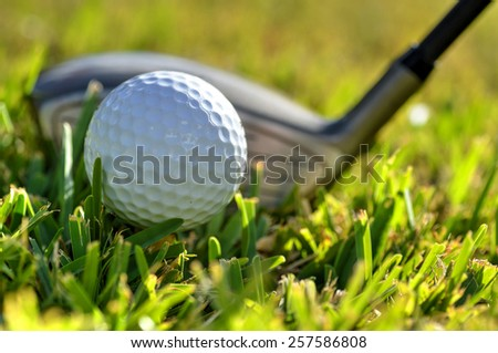Close up shot of a golf ball and driver on green fairway grass - stock photo