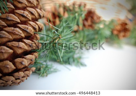 Close-up shot of an arrangement of pine cones and garland.