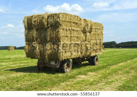 Close-up shot of bales of hay on a trailer standing in a green field under a blue sky - stock photo