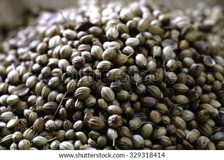 Close-up shot of dried coriander seeds in a wooden plate on a wooden table  - stock photo