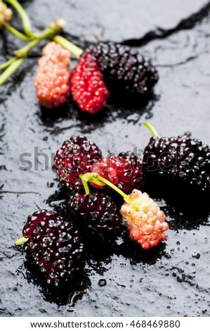 Close up shot of fresh ripe mulberries on black background