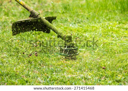 close up shot of gasoline trimmer head with nylon line cutting fresh green grass to small pieces - stock photo