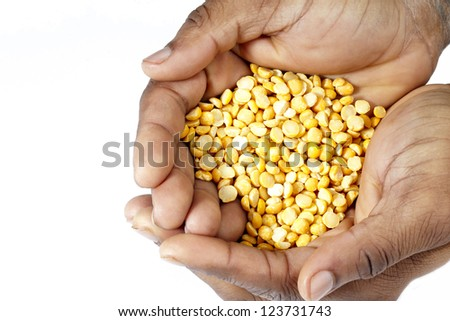 Close-up shot of handful of yellow beans.