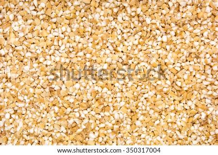 close up shot of split corn seeds background - stock photo