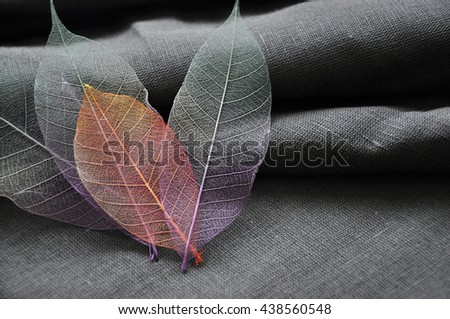 Close up skeleton leaves put in heart shape with gray background - stock photo