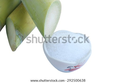 Close up Sugarcane, Fresh sugar cane for extracting the juice  isolated on white background with clipping path.