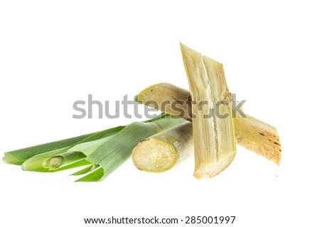 Close up sugarcane isolated on white background