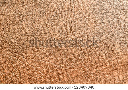 Close-up texture of the leather