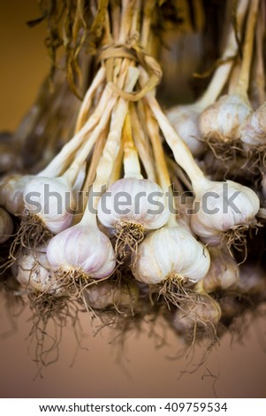 Close up thai garlic bulbs and garlic cloves - stock photo