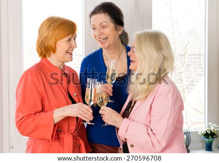 Close up. Three Very Closed Mom Friends Holding Glasses of Wines While Enjoying Their Talk Near the Window. - stock photo