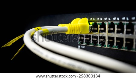 Close up UTP Cat5e Cable on network switch - stock photo