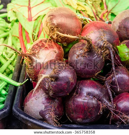 Close-up view group of fresh, organic Red beets on display for sale at Colfax, Whitman County, Washington, USA.