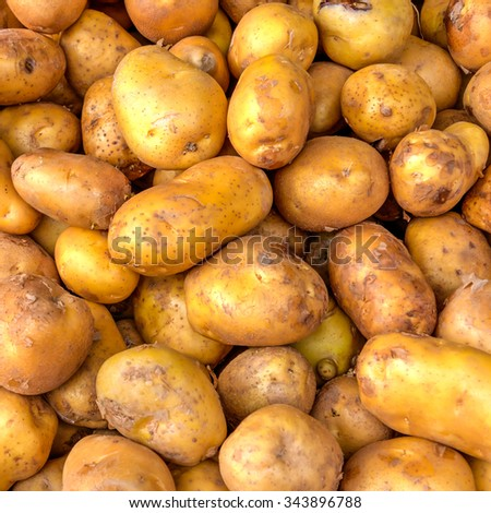 Close-up view heap of fresh and organic raw ripe potatoes tubers on display at Vegetable Stall at Local Market in Little India, Singapore. Natural food ingredient background and pattern texture