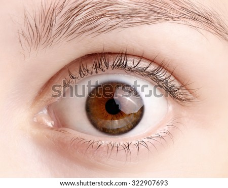 Close up view of a brown wide open woman eye - no make up on