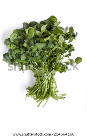 Close up view of a bunch of fresh watercress isolated on a white background. - stock photo