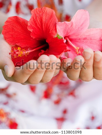 Close up view of a young girl's hands holding hibiscus flowers with care. - stock photo