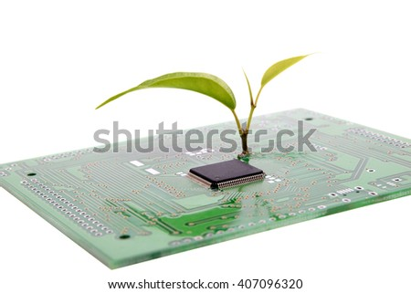 Close-up view of circuit board with microchip and plant sprout taken on white background. Nanotechnology and environmental conservation concept - stock photo