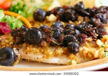 Close-up view of crouton-crusted tilapia fillets with blueberry pepper sauce, salad and potatoes