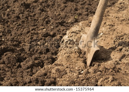 close-up view of digging - stock photo